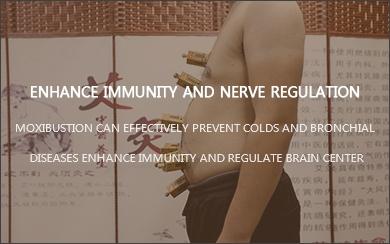 Enhance immunity and nerve regulation